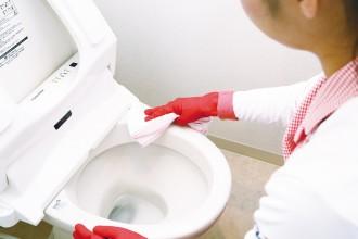 日頃のお手入れでは、落としきれない尿石汚れがキレイに。