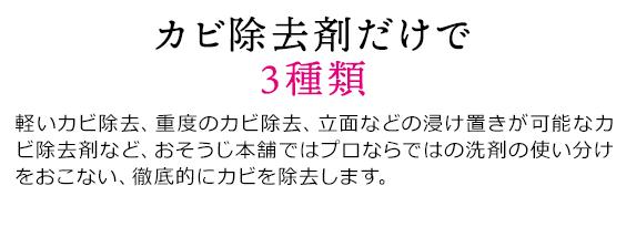 sp_2009hayawari_02
