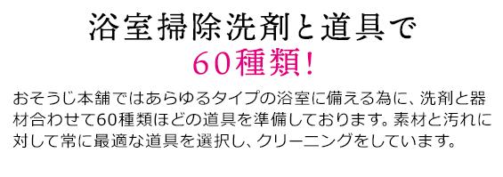 sp_2009hayawari_03re