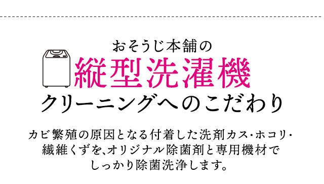 sp_2009hayawari_10