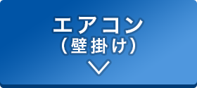 sp_2011oosouji_02-01