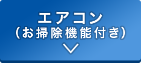 sp_2011oosouji_02-02